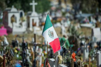 A November 2020 file photo of a Mexican flag in Mexico state, Mexico