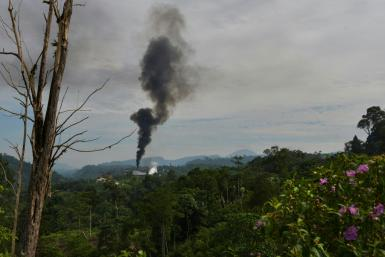 Indonesian palm oil factories have been blamed by environmentalists for deforestation