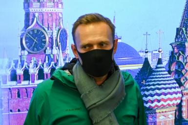 Mass protests have been called for Wednesday for jailed Kremlin critic Alexei Navalny