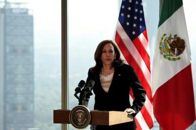US Vice President Kamala Harris has caught flak from Republican lawmakers -- and some progressives in her own Democratic Party -- during her trip to Central America and Mexico to address the immigration crisis