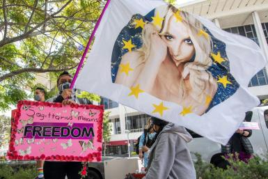 """Some adoring Britnet Spears fans have launched a """"FreeBritney"""" online campaign"""