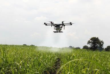 Food And Agriculture Industries Are Ripe For Disruption, Investors At The Pinduoduo Forum Say