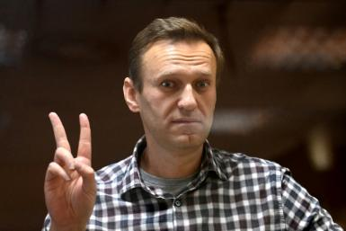 Alexei Navalny, President Vladimir Putin's most vocal domestic critic, was detained in January and later sentenced to 2.5 years in a penal colony