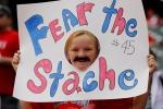 The Stache Act