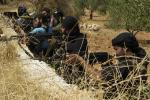 FSA fighters