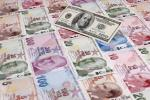 Emerging Market Currencies Sell-Off: The Real Lesson