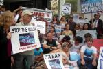 Ric O'Barry Japan Deport Dolphin Hunt
