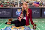 Hallmark Channel's Kitten Bowl III