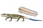 Ancient Tail detaching reptile