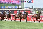 The investigation into the mass slaughter of Australian racehorses came just weeks ahead of the prestigious Melbourne Cup turf race