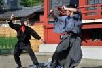 In a crime worthy of the legendary ninja, a safe containing more than $9,500 has been stolen from a Japanese museum dedicated to the martial arts experts