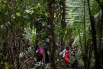 A Haitian migrant girl is seen crossing the Darien Gap jungle between Colombia and Panama in September 2021 -- a record number of children have made the trek in 2021, UNICEF says