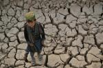 A child stands on a dry land in Bala Murghab district of Badghis province. Drought stalks the parched fields around the remote Afghan district of Bala Murghab, where climate change is proving a deadlier foe than the country's recent conflicts