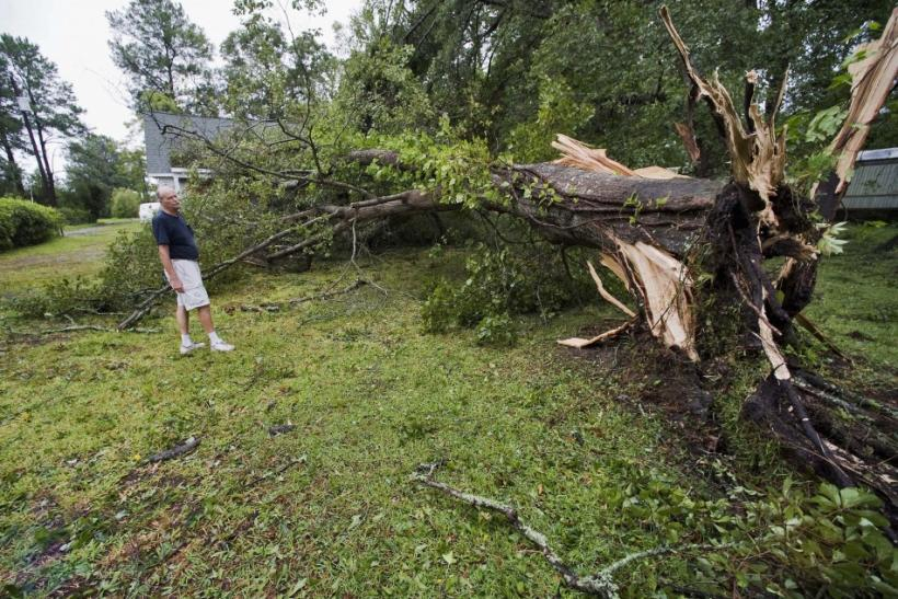 Don Hurtig looks over an oak tree that blew over in his front yard as Hurricane Irene comes ashore near Morehead City, North Carolina