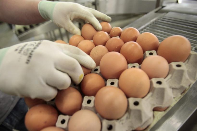 A worker sorts eggs at egg-producing company Toni's Freilandeier in Glein