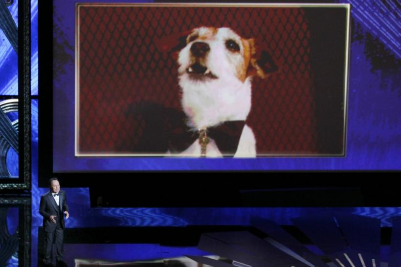 The Artist: Uggie the Dog's Best Oscar Moments [PHOTOS]