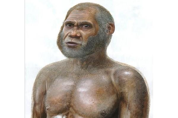 Concept image of 'Red Deer Cave people'