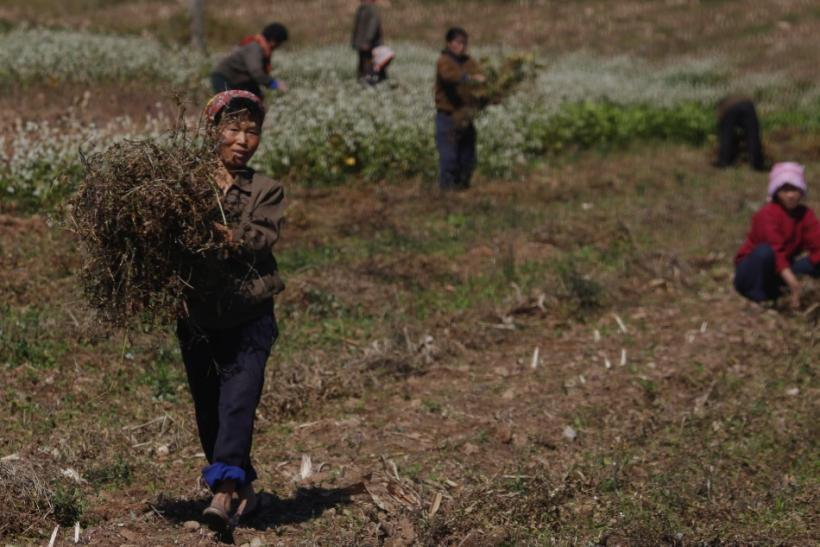 North Korea relies on food aid to feed its population