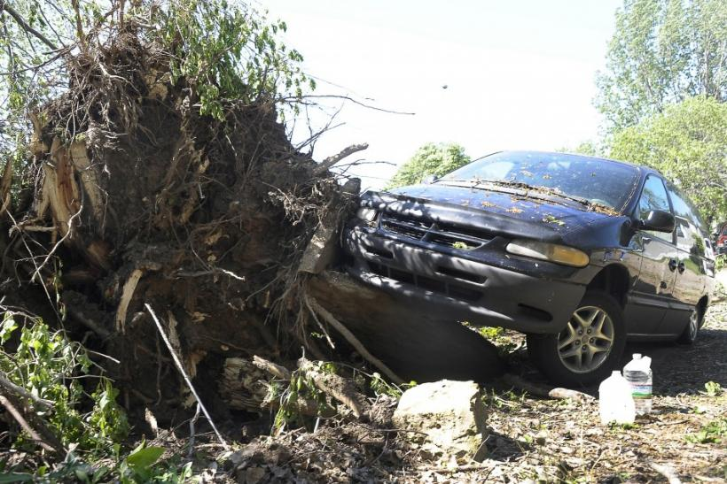A car damaged by an uprooted tree during a tornado is seen in the southern area of Wichita, Kansas