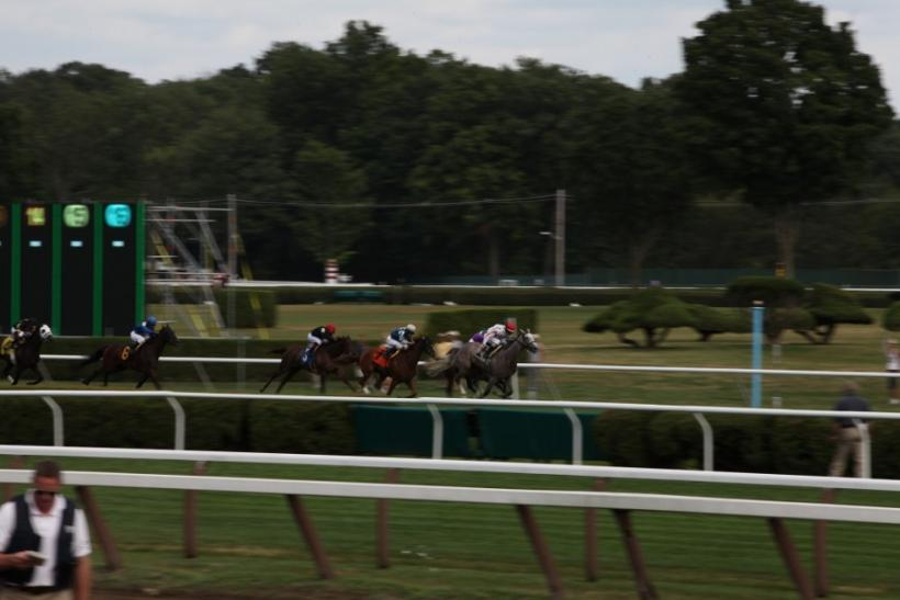 A horse runs on the Saratoga Race Course during opening weekend.