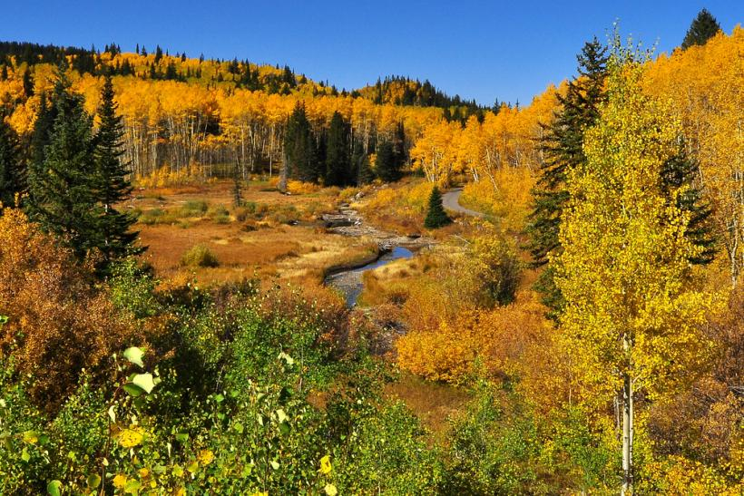 Grand Mesa Scenic and Historic Byway, Colorado