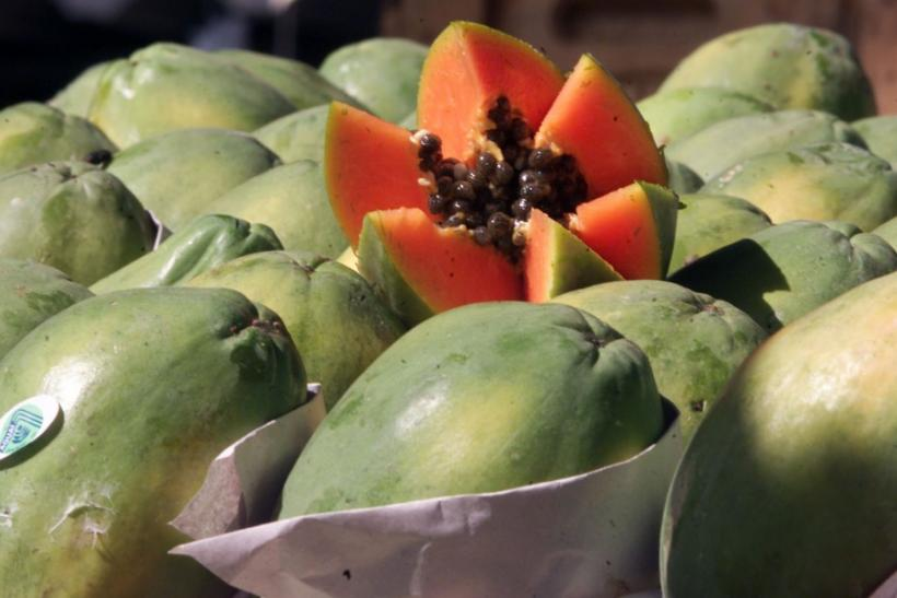 The Brazilian exotic fruit papaya,