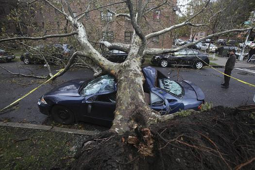 Sandy 31 Oct 2012 Queens NY tree car 2