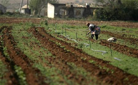 South African Farm Workers Win Huge Pay Increase; Farmers Warn Of Doomsday