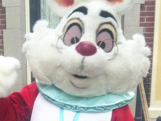 Black Family Sues Disneyland After Sons Are Ignored By White Rabbit Character