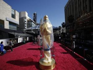 Oscars Red Carpet 2013
