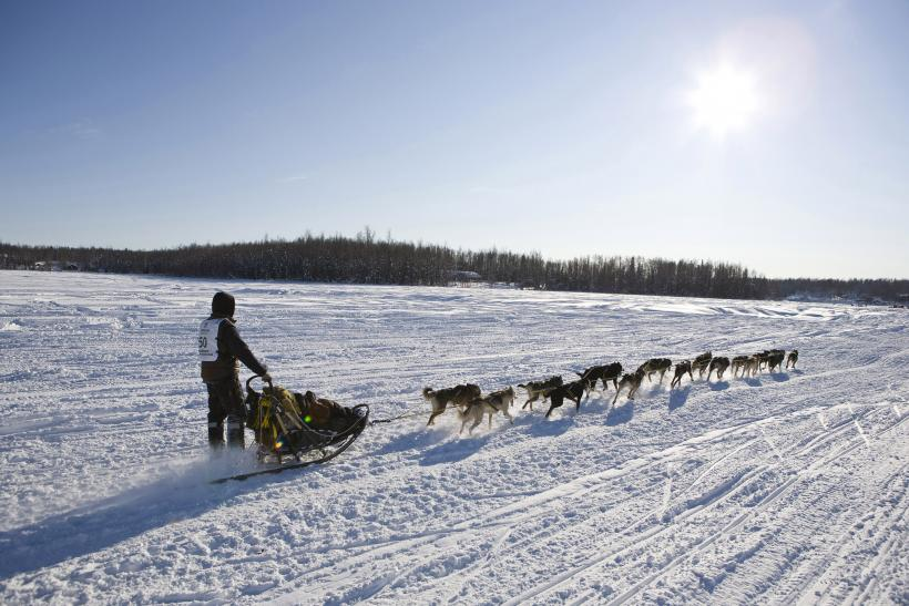 Brent Sass of Fairbanks, Alaska and his team during the 40th Iditarod