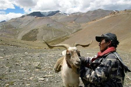 China, India Argue Over Barren Area In The Himalayas