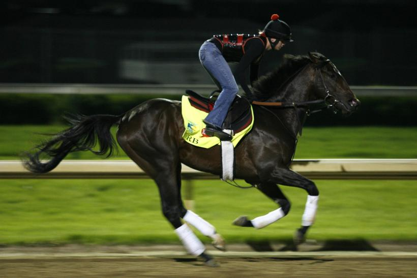 Orb 2013 Kentucky Derby