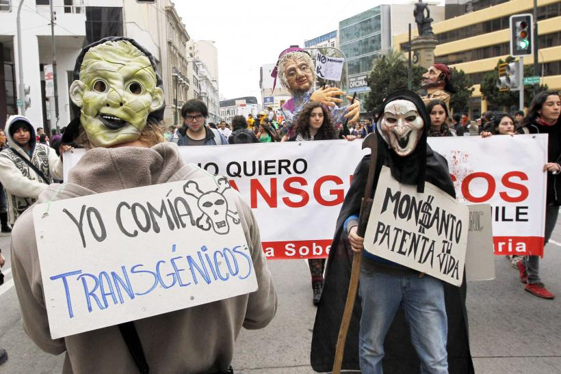 March Against Monsanto-Valparaiso, Chile-2A