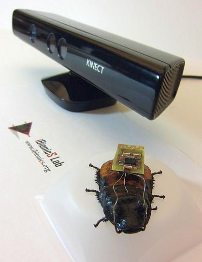 How Remote-Controlled Cockroaches Can Save Your Life