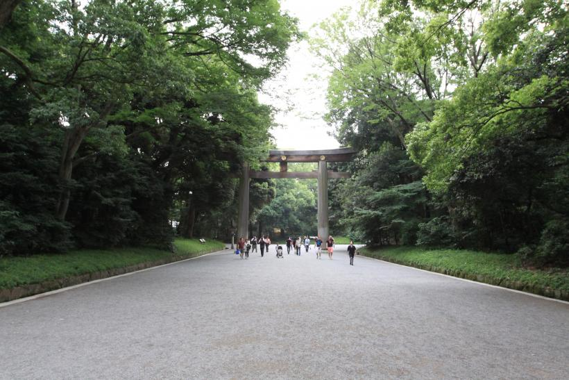 Meiji Shrine Tori
