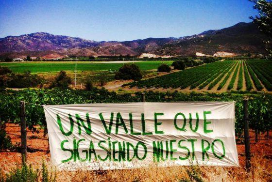 Mexico's Surprising Wine Industry Is In Trouble