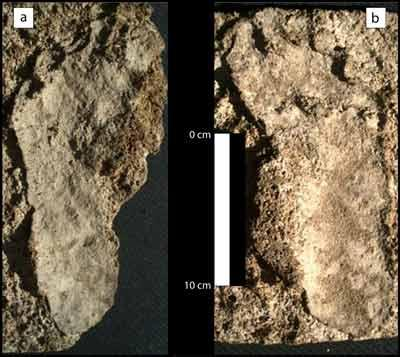 10,550-Year-Old Human Footprints Discovered In Mexico
