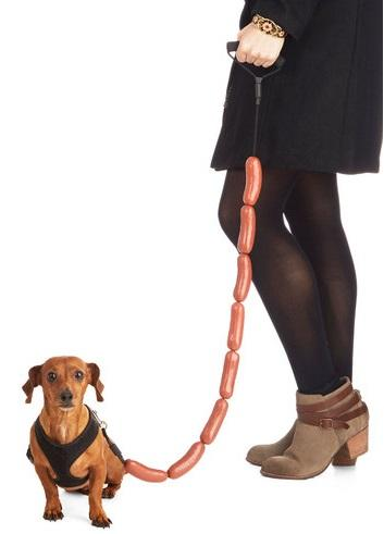 hot dog leash