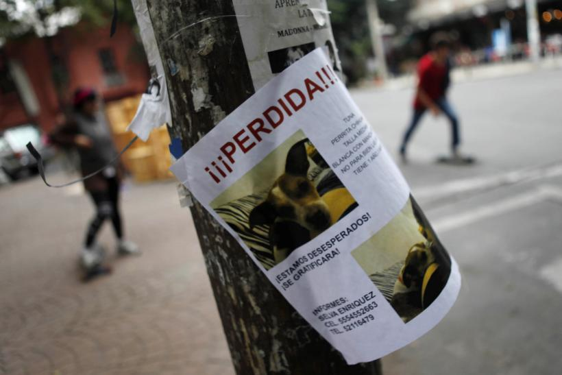 Dog kidnappings, Mexico City