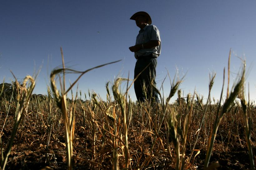 Australian Farmers Suffer From Drought