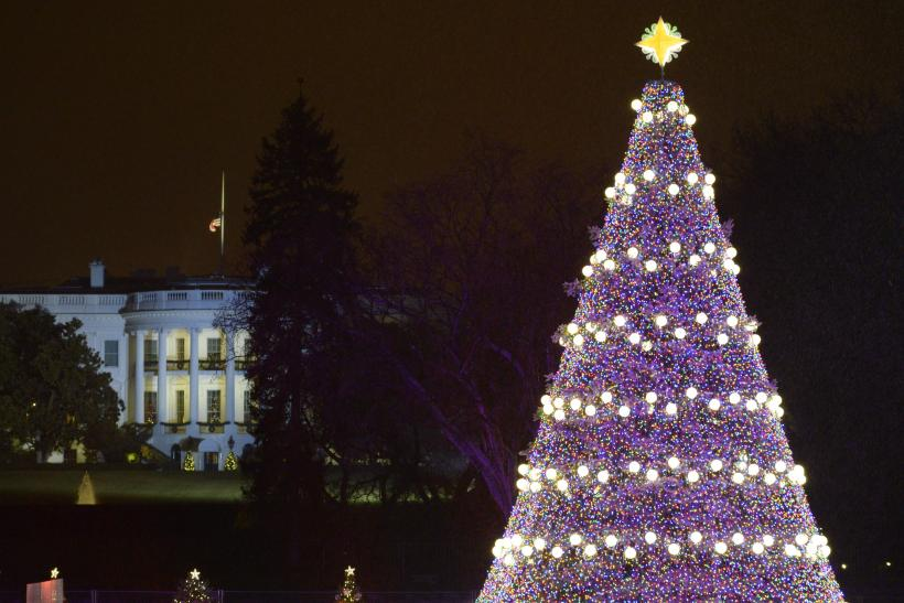 White House Christmas Tree Lighting 2014: Live Stream