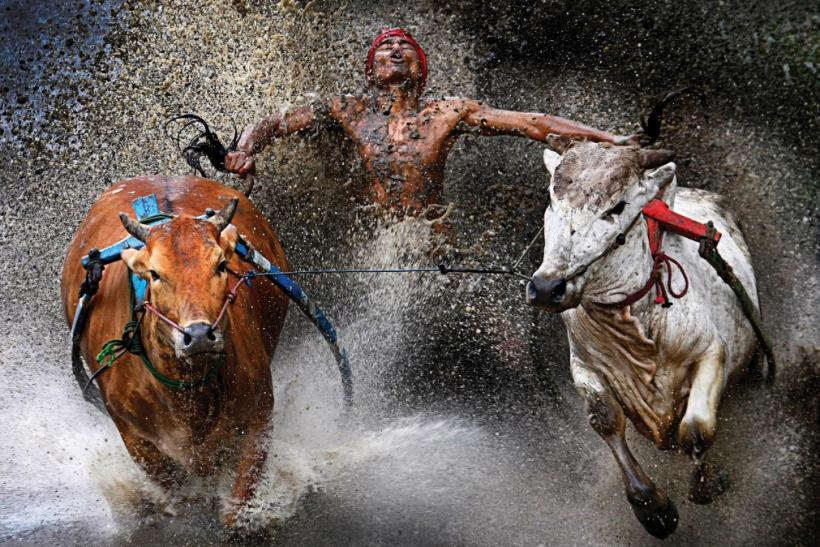 World Press Photo Awards 2013 - Sports Action - Indonesia