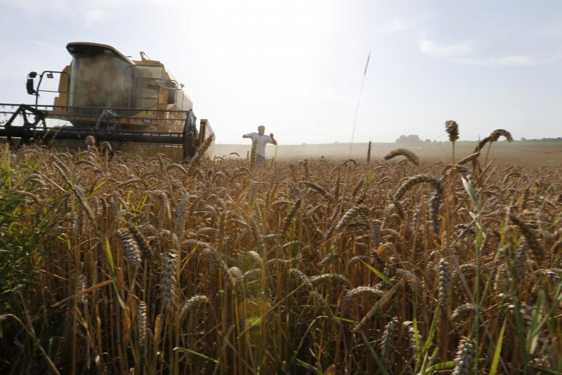 Climate Change A Bigger Threat to Global Food Supplies: MIT