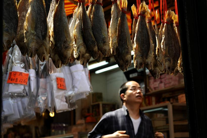 Hong Kong illegal wildlife trade