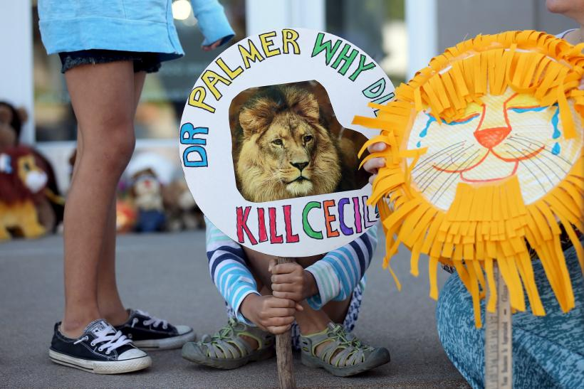 Cecil the lion protest